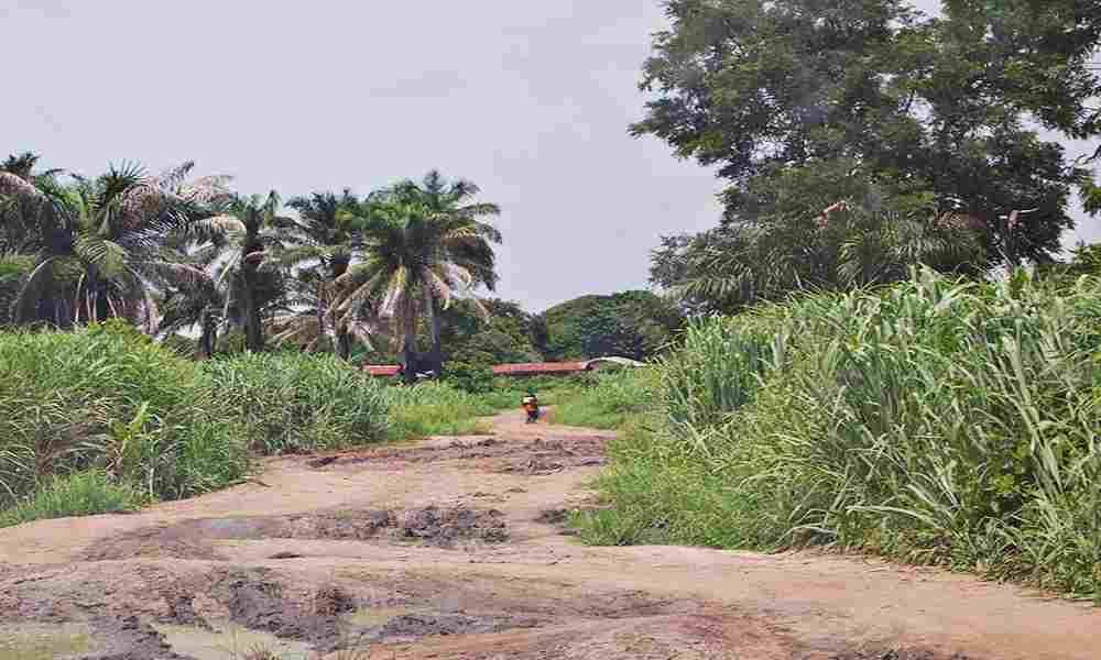 Nigeria: 8 cristianos fueron secuestrados mientras iban a evangelizar
