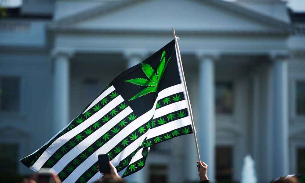 Casa Blanca pide la renuncia de empleados que consumieron marihuana