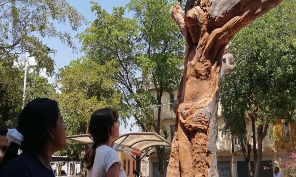 Hombre crea imagen de Cristo en un árbol y la gente lo venera