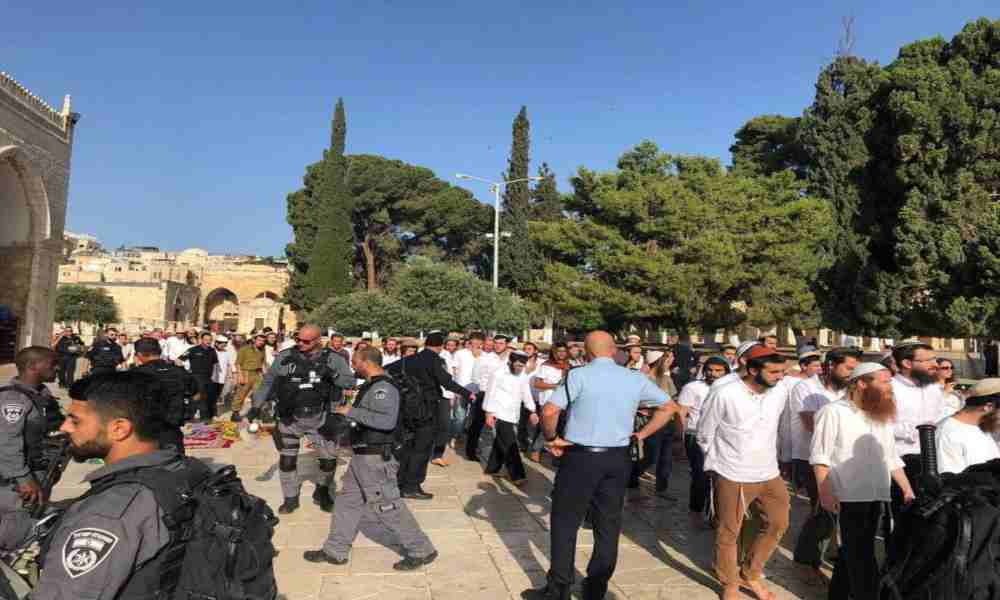 Tras 11 días de bombardeo reabren el Monte del Templo a judíos