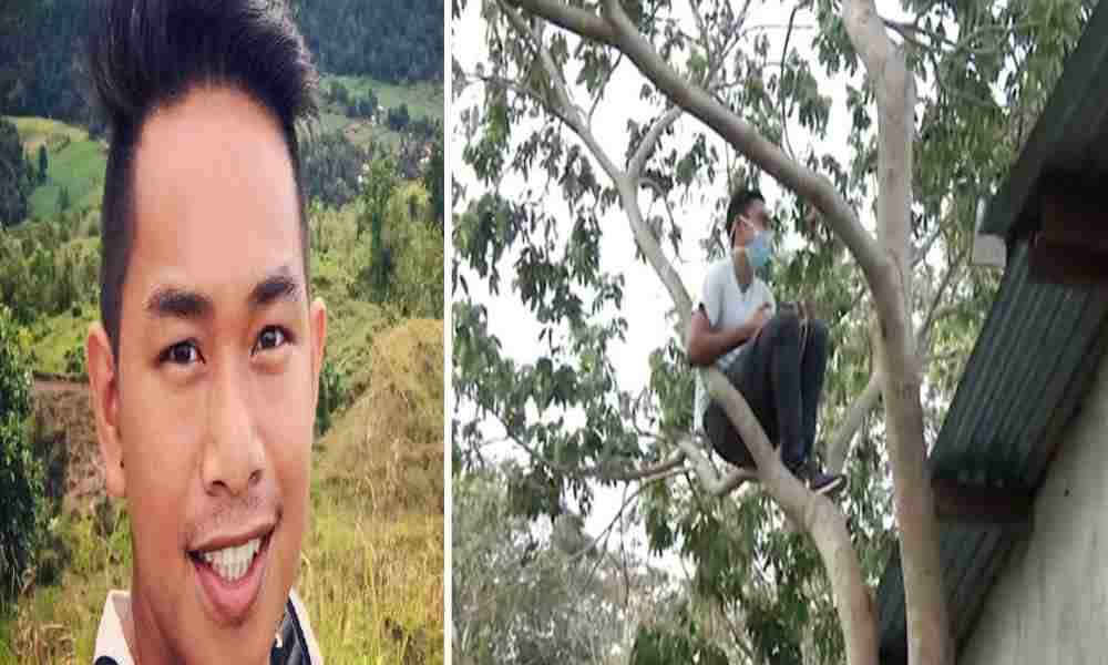 Cristiano trepa un árbol en la montaña para ver estudio bíblico en línea