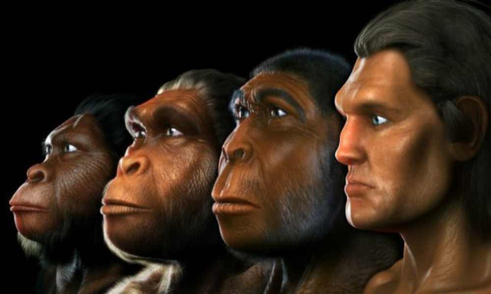Estudio revela que mayoría de estadounidenses cree en la evolución
