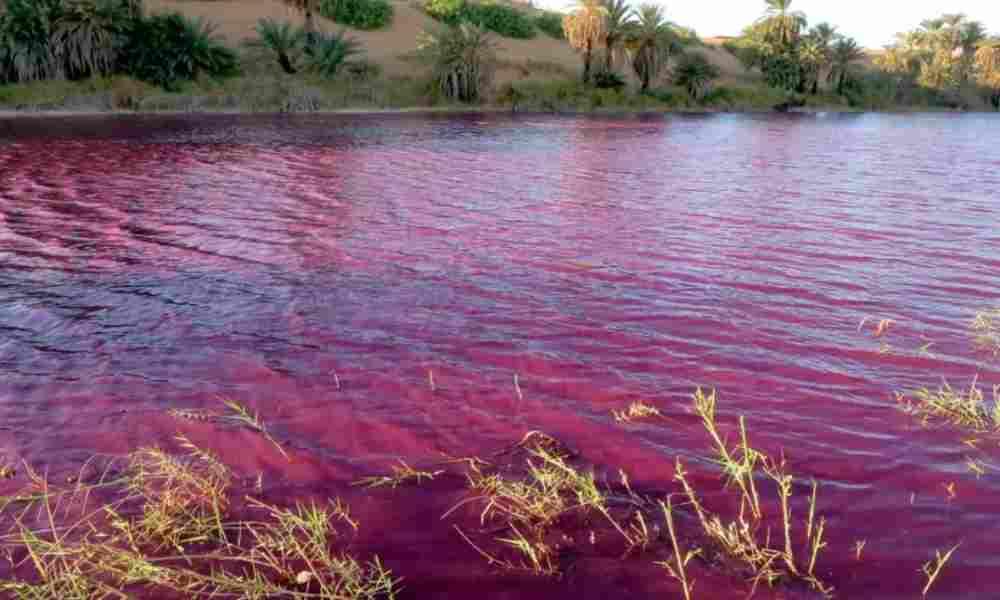 Río en el Jordán se vuelve color sangre: ¿es la profecía mesiánica de Miqueas?
