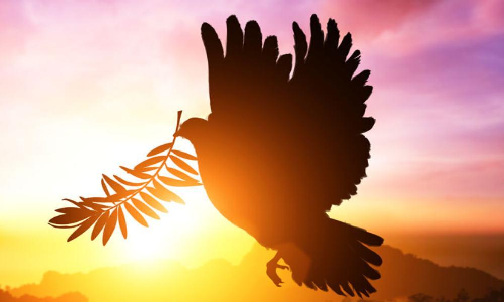Informe: La mayoría de los cristianos estadounidenses no cree en el Espíritu Santo